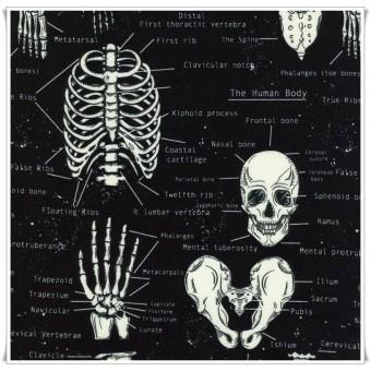 Retal tela skeletons 82 cms