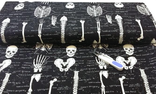 Tela con los huesos del cuerpo humano