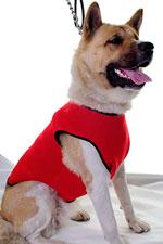 Abrigo perrito en rojo neopreno