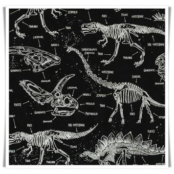 Tela esqueletos dinosaurios negro