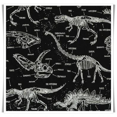 Tela esqueletos dinosaurios